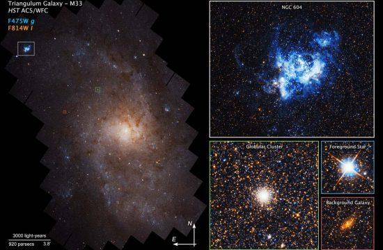 Details in the Triangulum galaxy