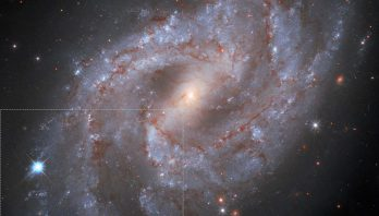 STScI: Hubble Watches Exploding Star Fade into Oblivion