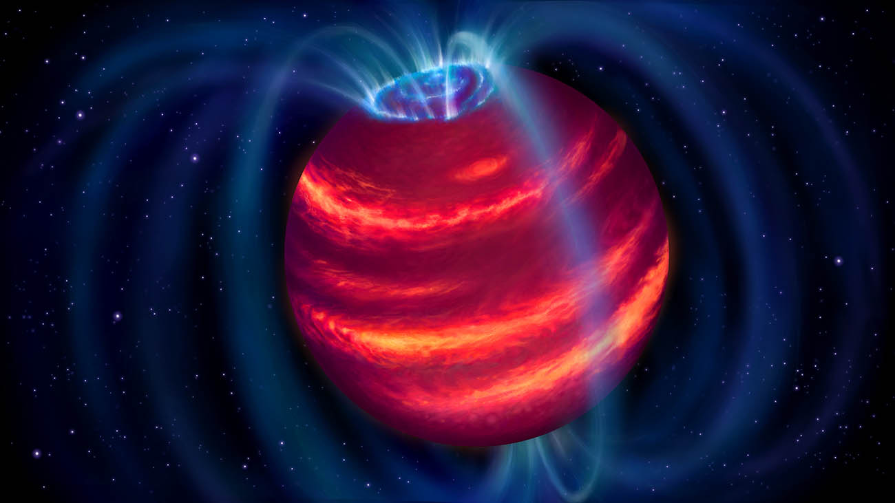 Artist's impression of the cold brown dwarf BDR J1750+3809. The blue loops depict the magnetic field lines. Charged particles moving along these lines emit radio waves that LOFAR detected. Some particles eventually reach the poles and generate aurorae similar to the northern lights on Earth.